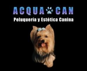 peluqueria canina acqua can a precios jamas vistos en zona oriente