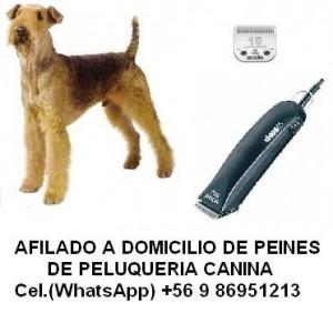 afilado de cuchillas de peluquería canina a domicilio.