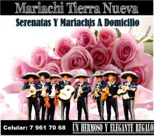 los mariachis de chile , en las condes: red fija :227270129