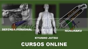 no dejes pasar esta oportunidad cursos online