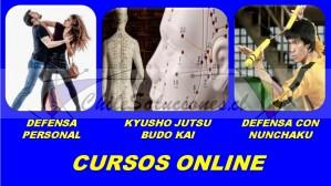 clases online para aprender a defenderte en la calle