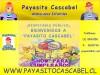 Animaci�n Infantil Payaso Cascabel