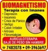 BIOMAGNETIMO A.S.C.CHILE