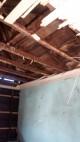 Eliminamos las termitas atencion permanente metodo garantizado...