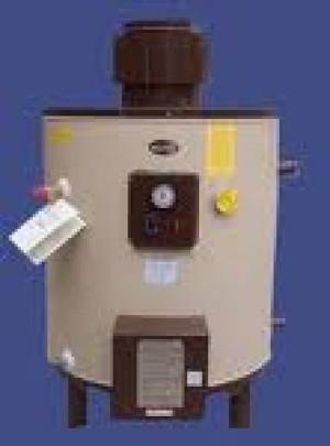 calentadores de agua termos winter gas electricos 2219640 mantenciones