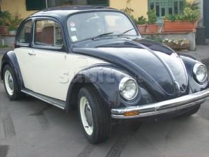 -84 escarabajo de cambio