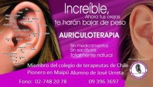 auriculoterapia chile       control de peso con imanes maipu