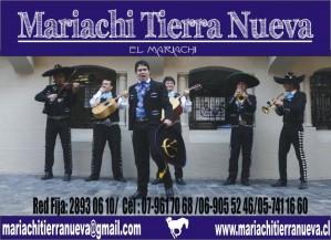 mariachis en el día de la mujer en santiago. fono: 28930610