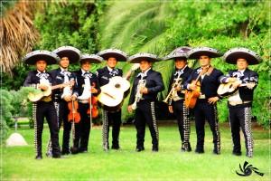 serenatas muy emotivas  : (022) 3016370 mariachi tierra nueva