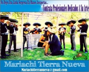 mariachi tierra nueva, serenatas en Ñuñoa:07 961 70 68