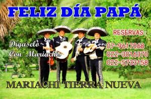 mariachis a domicilio en providencia:(022)7270129  mtn