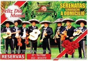 los mariachis de chile , viva el mariachi: red fija :227270129