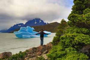 pinguino rey comience su dia de la mejor manera visitando la isla de