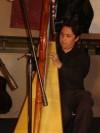 Profesor y Concertista de Arpa Popular o Folklórica.