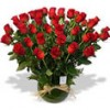 Envío de Flores a Domicilio, Rosas Ecuatorianas, Ramos de Flores