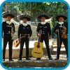 A celebrar todo con Mariachis !! 02-7279788