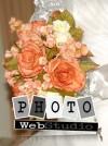 Fotografía Profesional para Matrimonios
