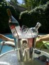 Gazrzónexpress.cl el mejor servicio de garzones en stgo y viña 09-1570121