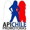 APICHILE Anfitrionas para Expomin y Expohormigón/ R.M